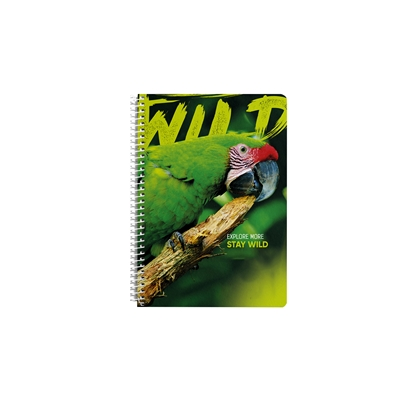 Picture of Notebook, A4, squares, offset paper, spiral, soft cover, 80 sheets