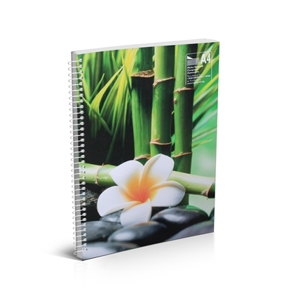 Picture of Notebook, A4, lined, 2 subjects, offset paper,  with metal spiral, soft covers, 100 sheets