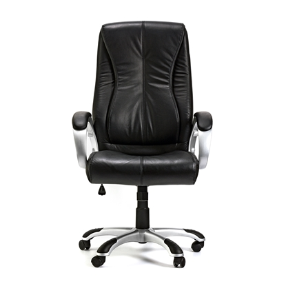 Picture of Hugo Director s Chair, leather, black