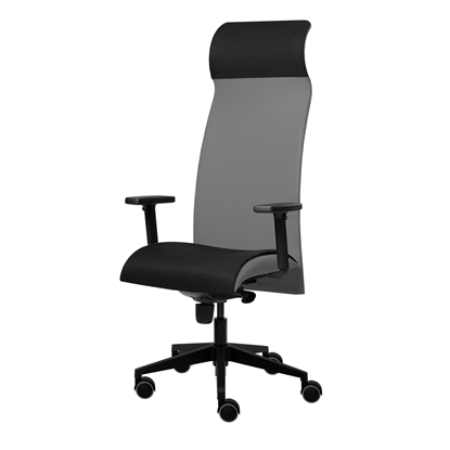 Picture of Solium Executive Chair, ergonomic, light grey
