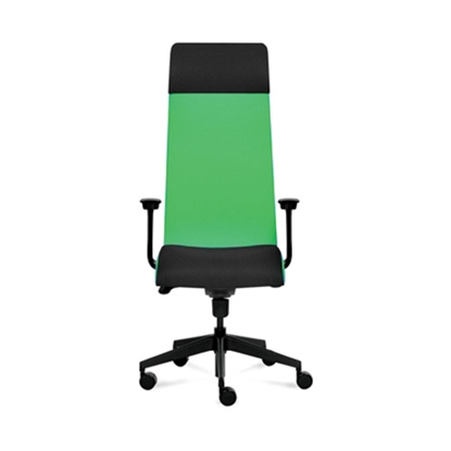 Picture of Solium Executive Chair, ergonomic, green