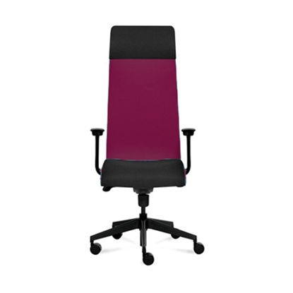 Picture of Solium Executive Chair, ergonomic, boredeaux