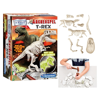 Picture of T-Rex excavation kit