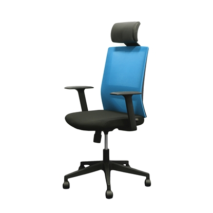Picture of RFG Berry HB Director s Chair, mesh and upholstery, black seat , light blue back