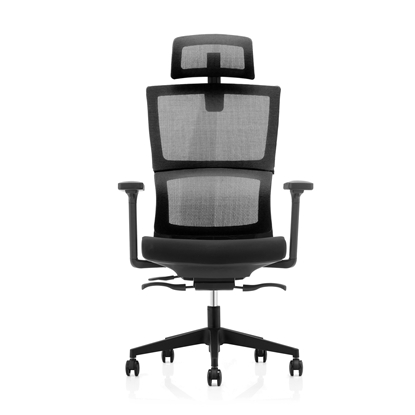 Picture of RFG Grove Chair, ergonomic, black