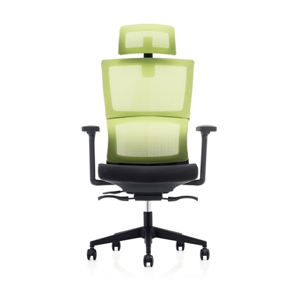 Picture of RFG Grove Ergonomic Chair, mesh and upholstery, black seat, green back