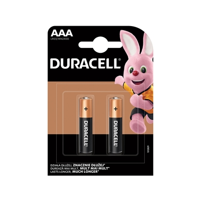 Picture of Duracell alkaline battery, AAA, LR03, 1.5 V, 2 pcs