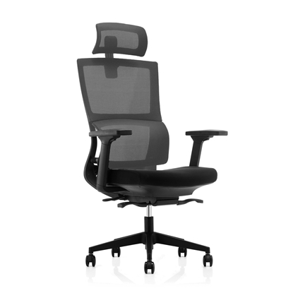 Picture of RFG Grove Chair, ergonomic, black seat, grey back