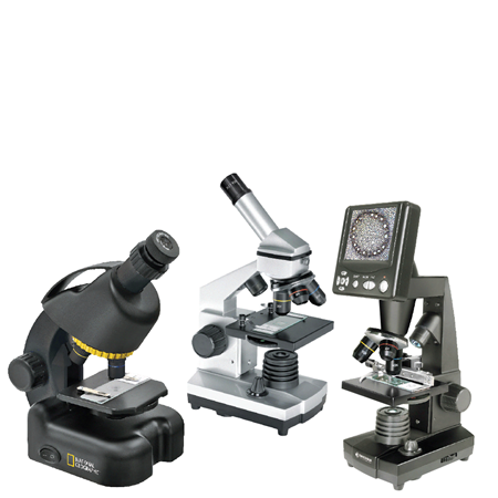 Picture for category Microscopes