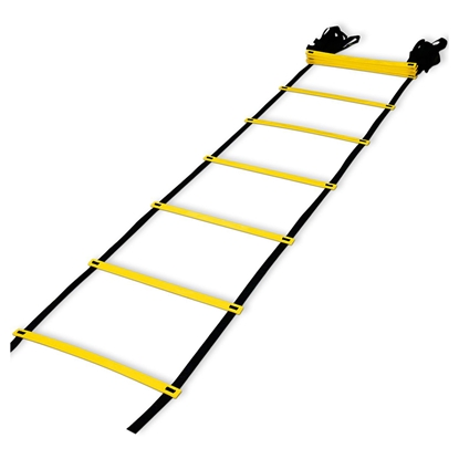 Picture of Training ladder