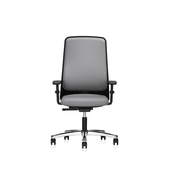 Picture of Interstuhl ergonomic chair Office1 Chrome 152