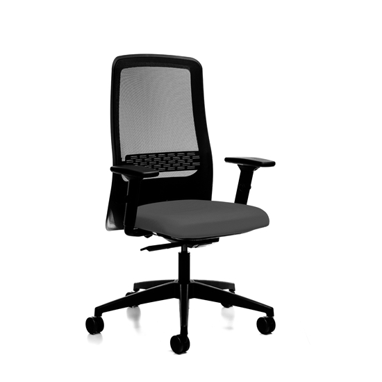 Picture of Interstuhl Ergonomic chair Office1 172II, gray
