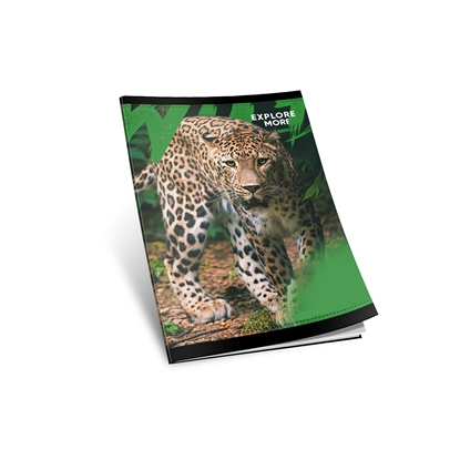 Picture of Notebook, A5, wide lines, newspaper, soft cover, 40 sheets